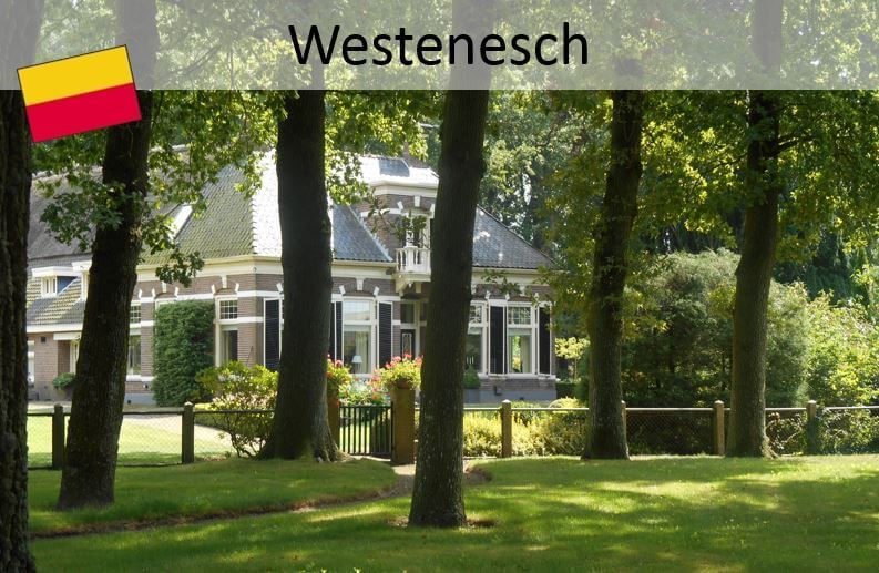 Drenthepad;  Emmen