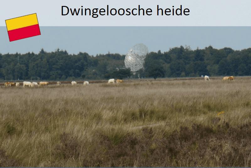 Drenthepad:  Dwingeloosche heide