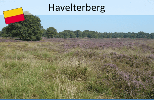 Drenthepad: Havelterberg