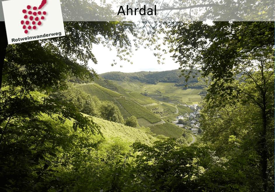 Ahr-dal rodewijn wandelroute