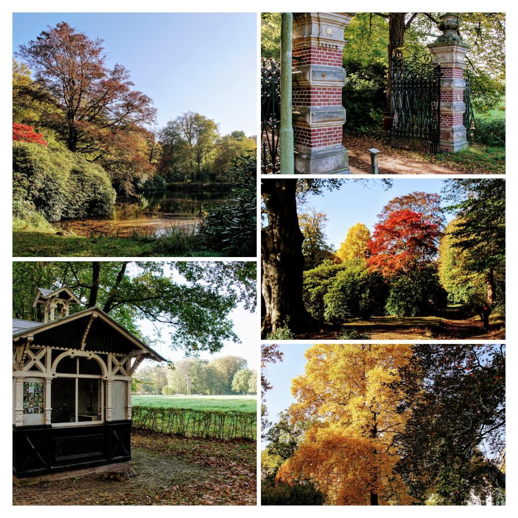 De Braak – Herfst